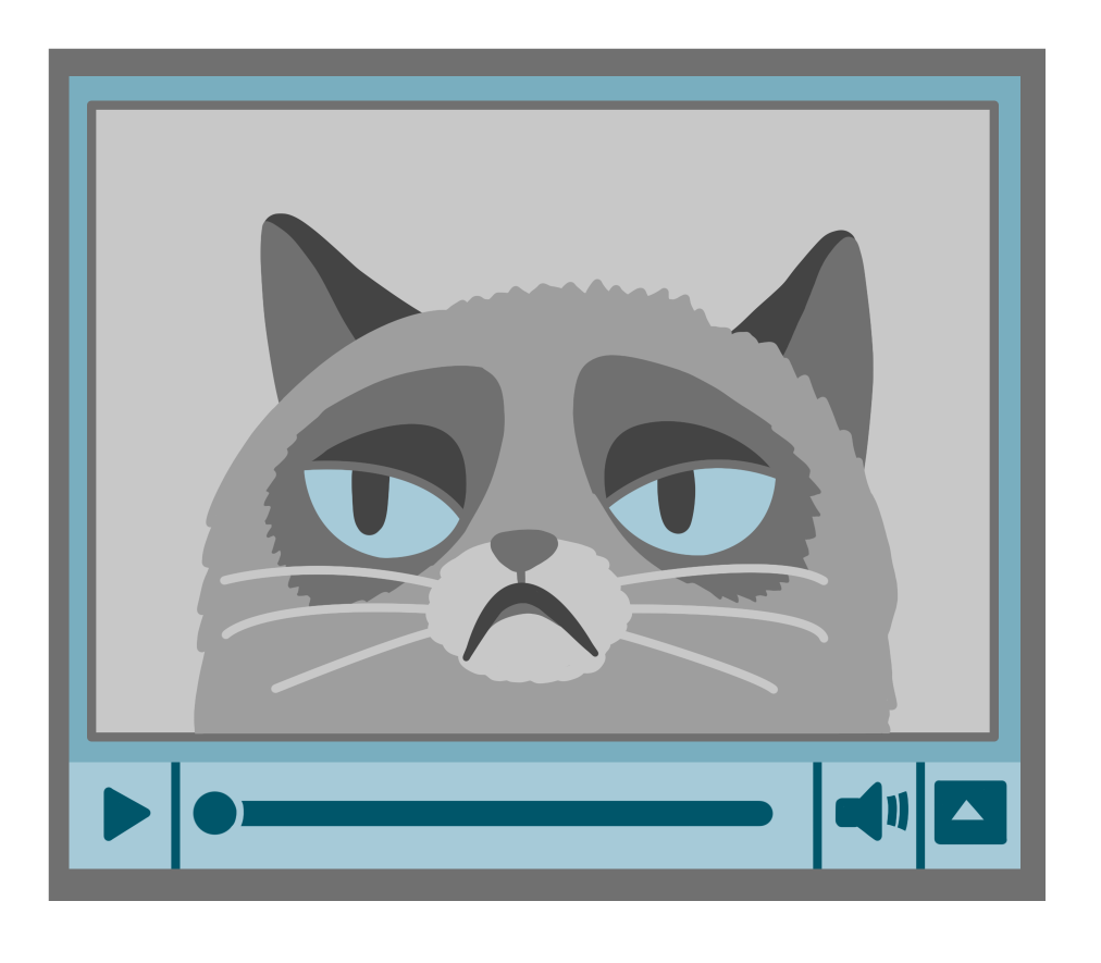 cat_video_preview